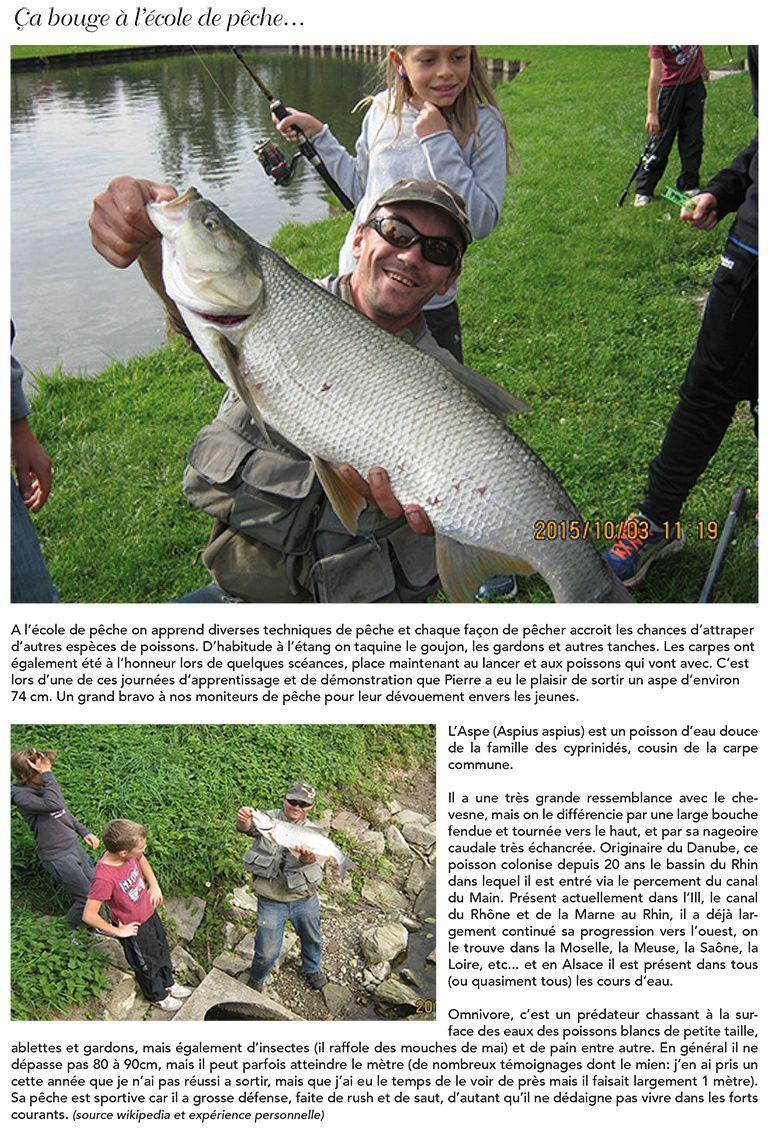 Journée initiation à la pêche