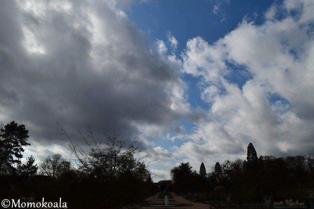 Jardin Des Plantes (2/2)