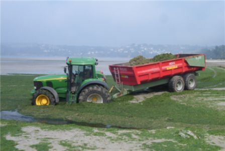 Alors que les algues vertes continuent d'envahir les plages de l'Ouest, quels sont les coûts cachés des pesticides et nitrates d'origine agricole ?