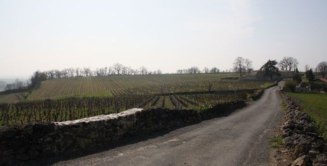 Château Vrai Canon Bouché acheté par la Française REM.