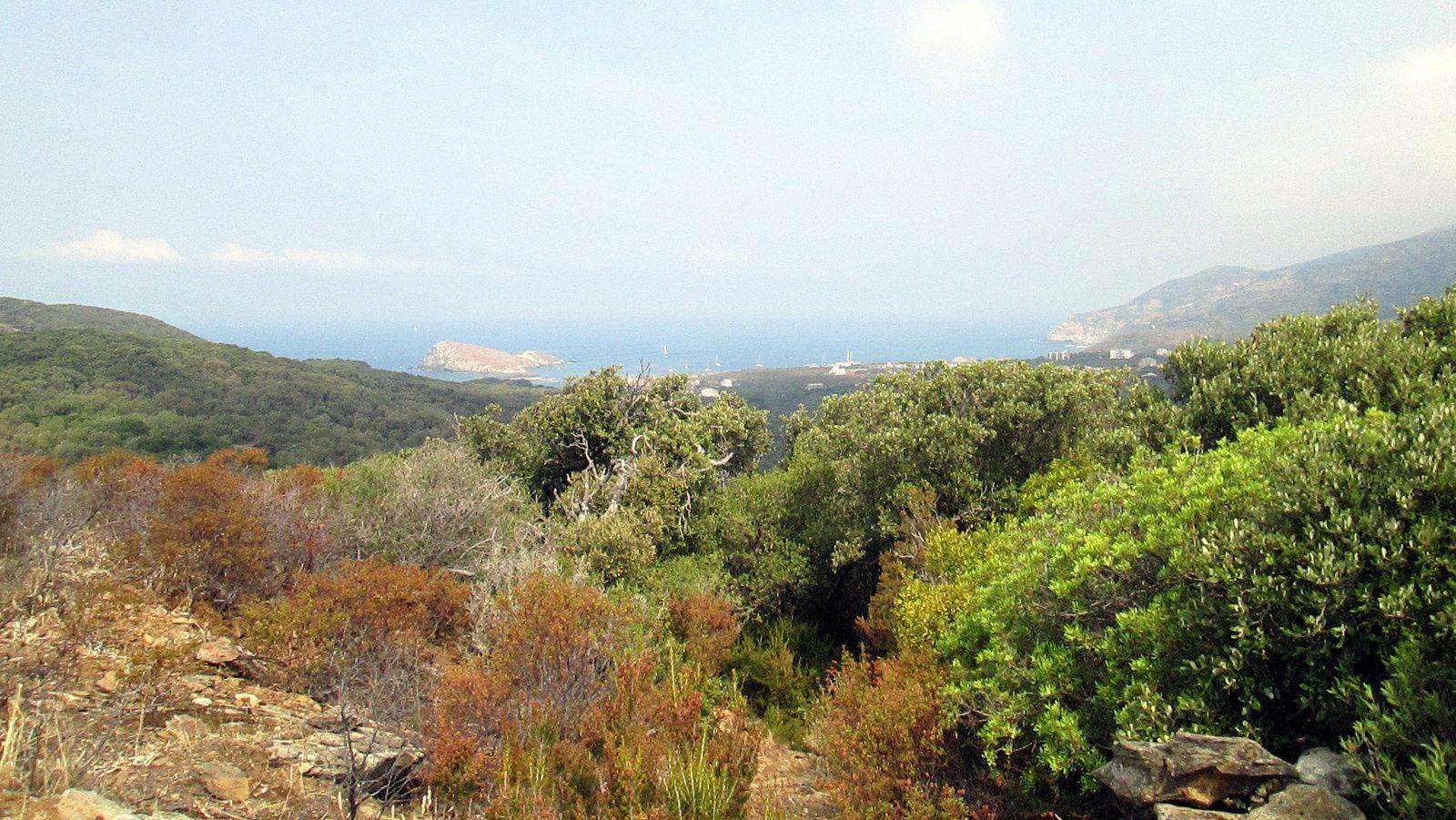 Carnets corses [1/2] : Cap Corse