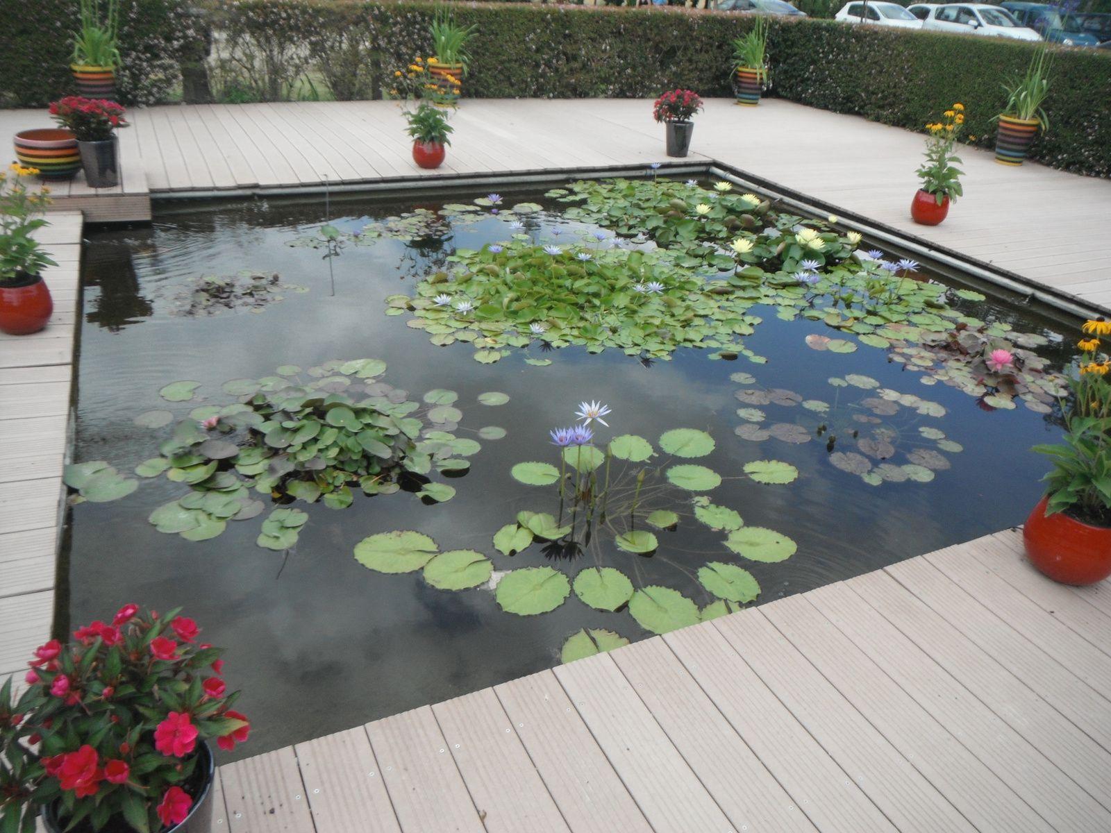 Le Jardin des Martels, Giroussens, Tarn (81)