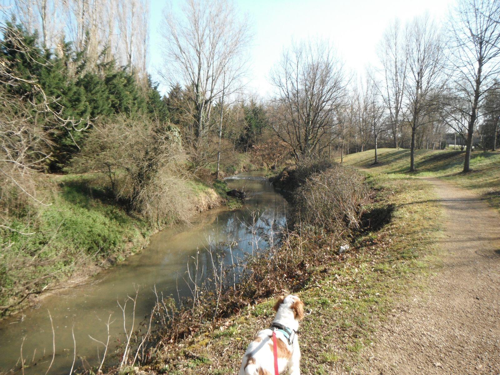 Seilh : Des bords de l'Aussonnelle à la Garonne