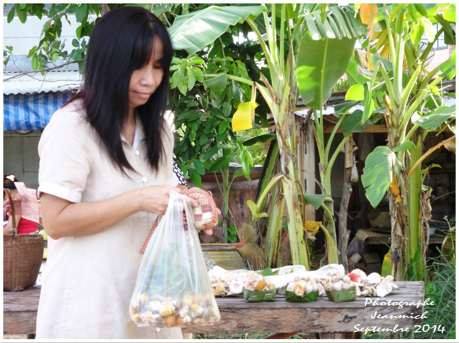 Les champignons en Thaïlande