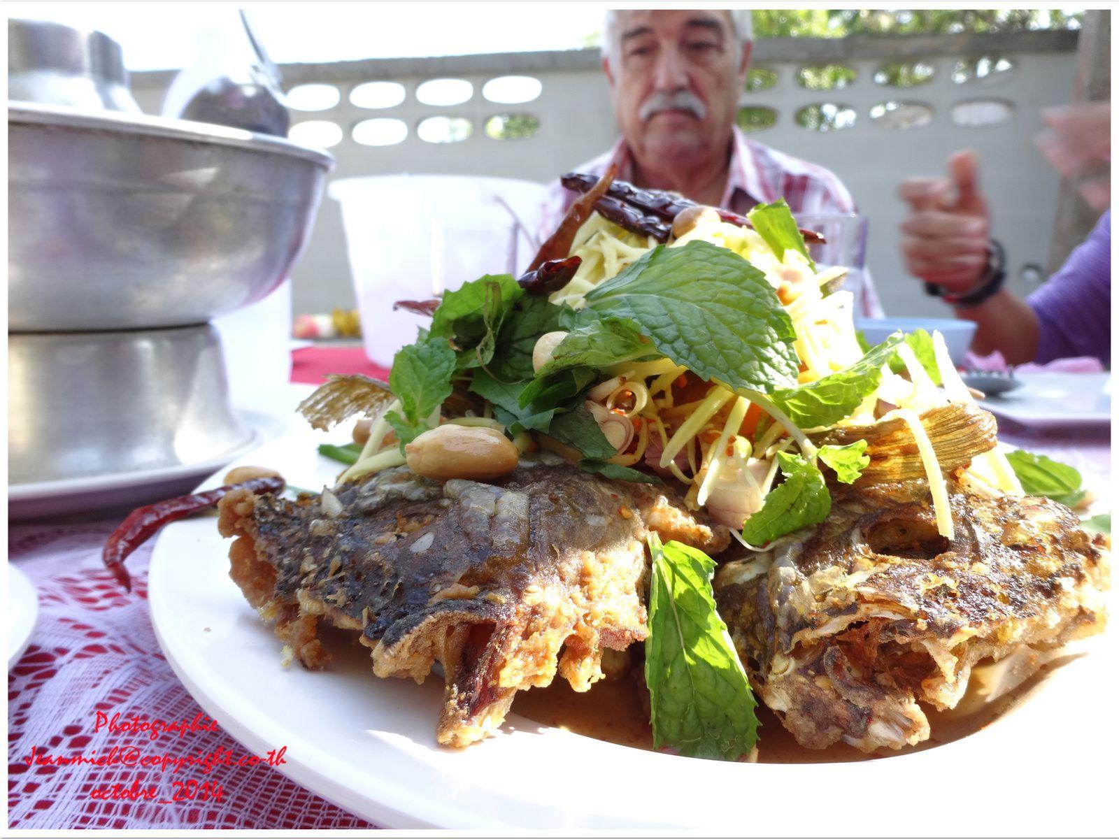 Devant Armand, un délicieux plat de poisson.