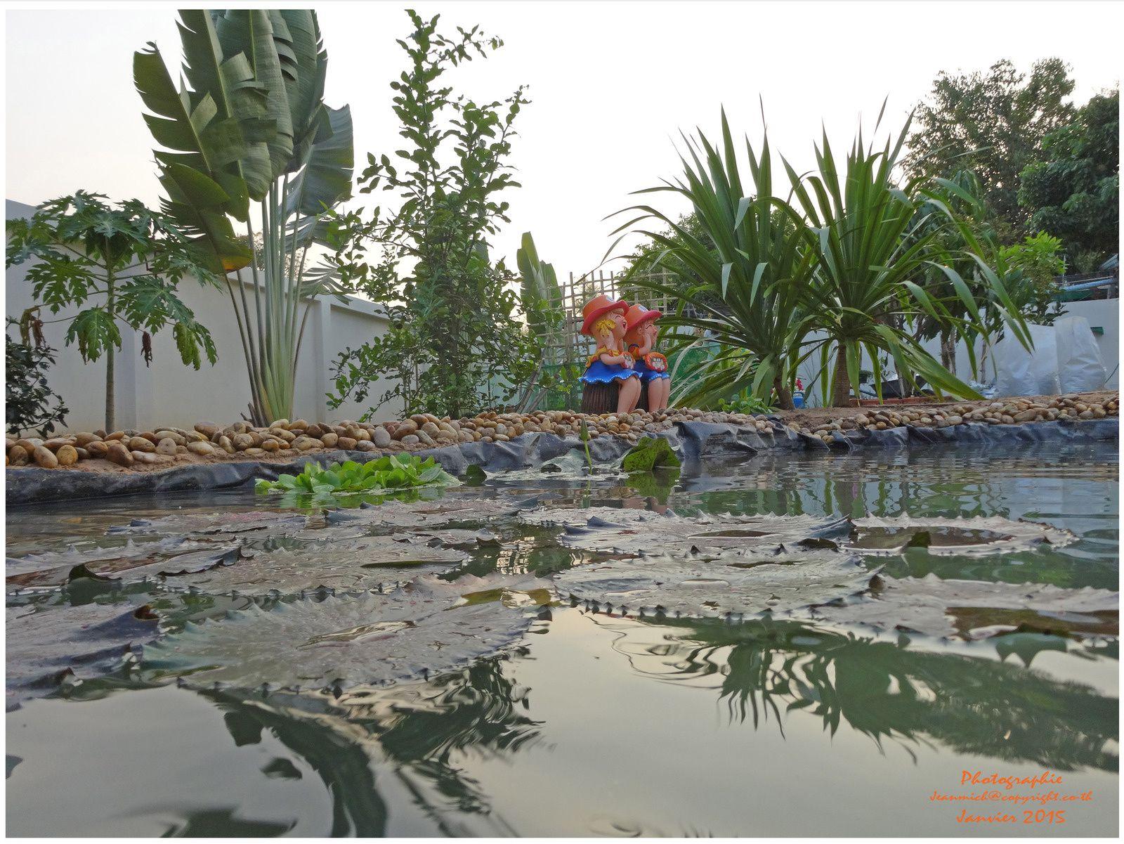 3ème étape de l'aménagement de notre étang.