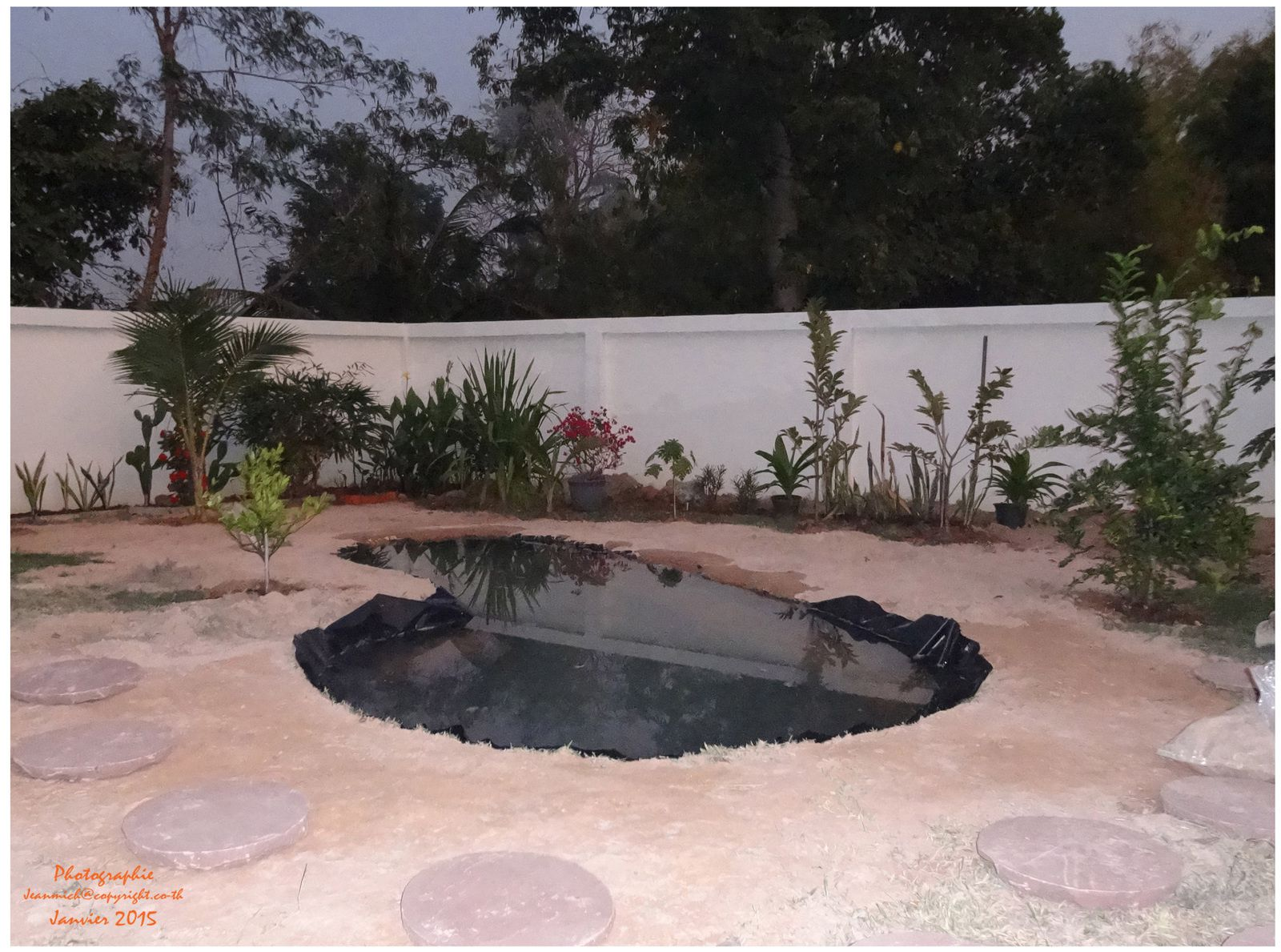 Les fleurs le jardin et la nature le blog de khon kaen for Bache etanche bassin