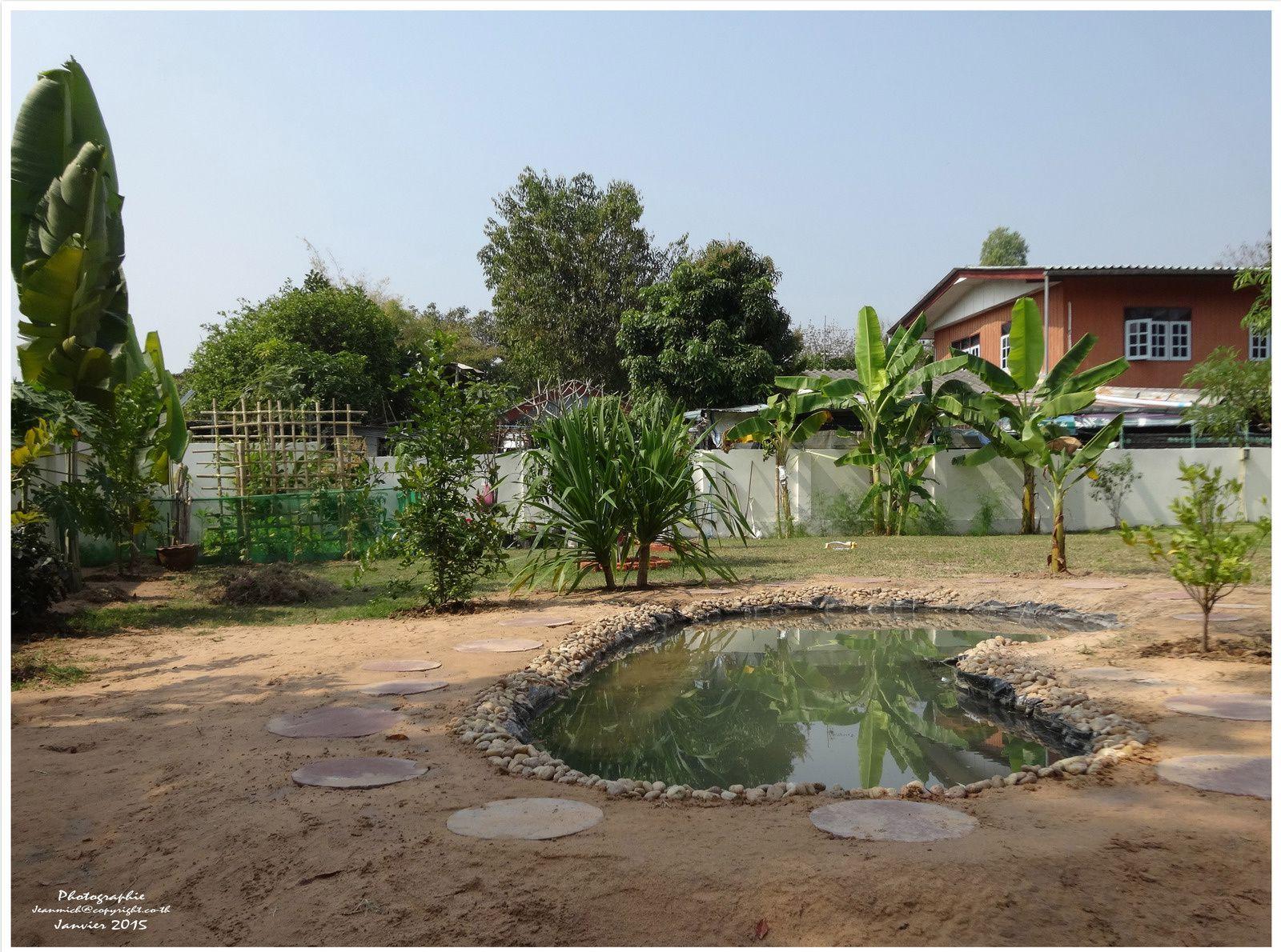 Mise en eau de notre étang (Thaïlande)