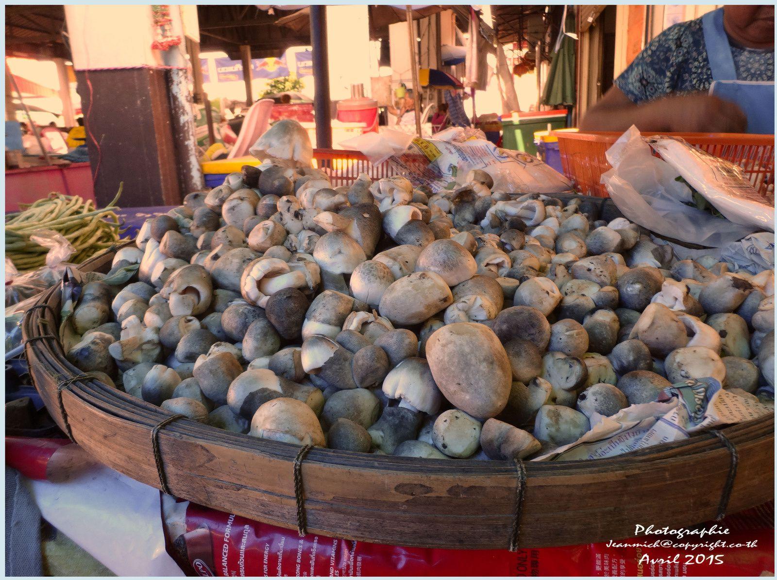 Un petit tour dans le marché local d'Ubolratana.....