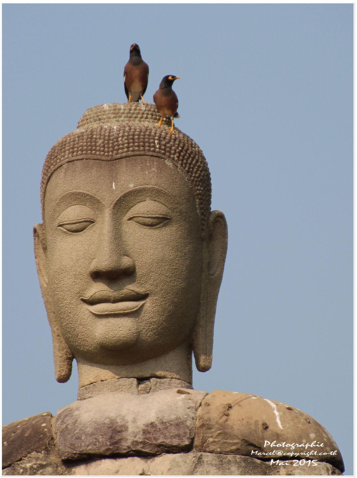 Ayutthaya le &quot&#x3B;Wat Chai Watthanara&quot&#x3B;