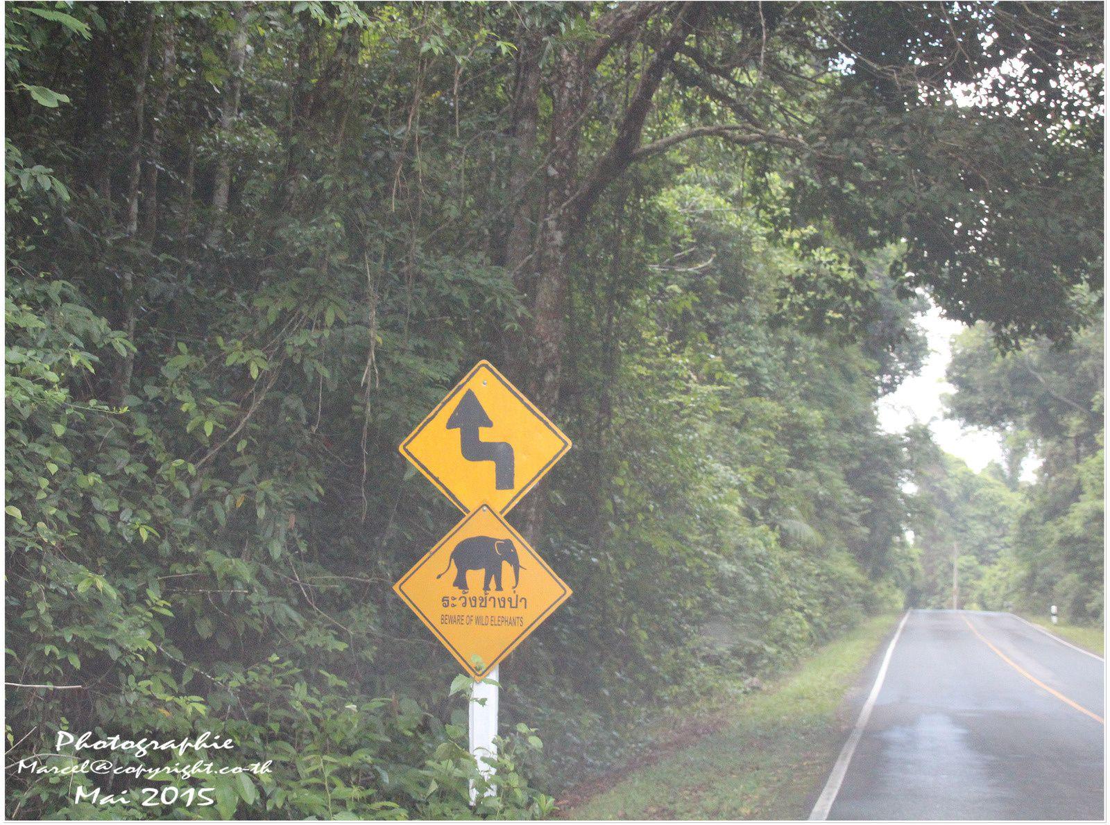 Les parcs nationaux de Thaïlande  &quot&#x3B;Khao Yai&quot&#x3B;