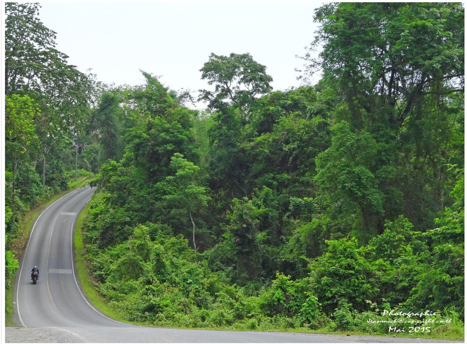 Le parc national de Khao Yai (en thaï: อุทยานแห่งชาติเขาใหญ่)