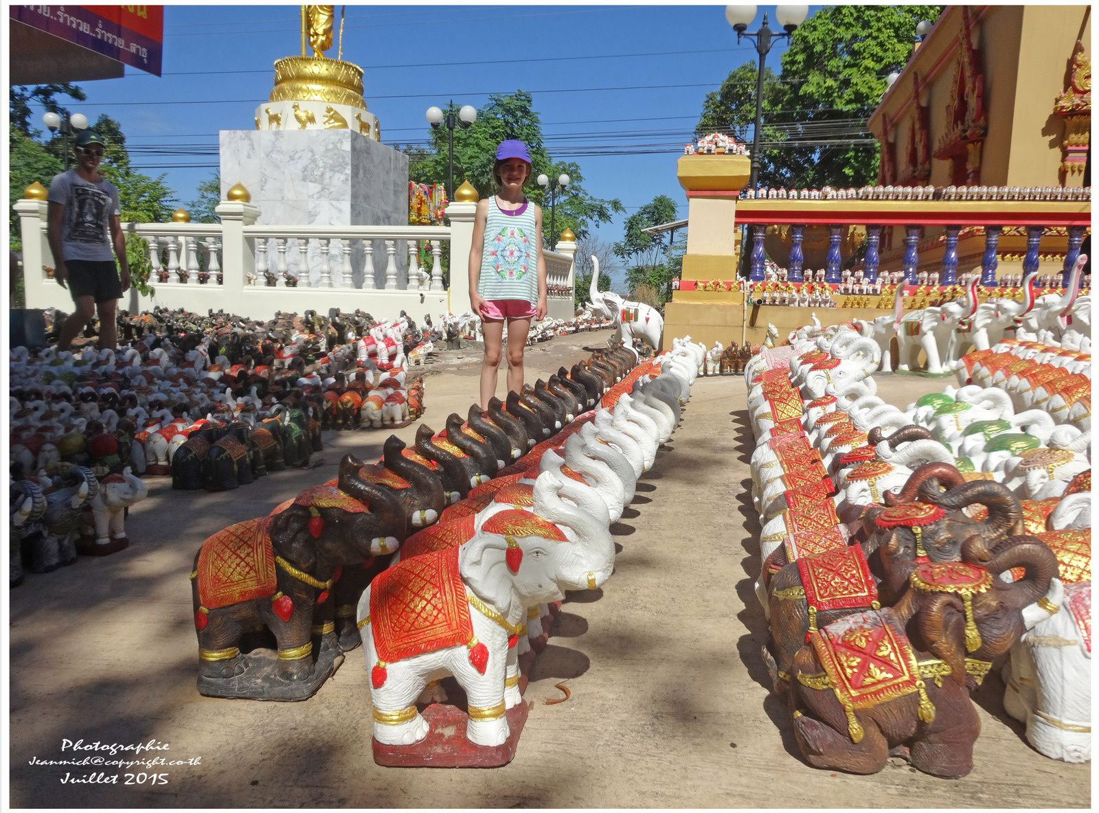 Un temple dédié aux éléphants.