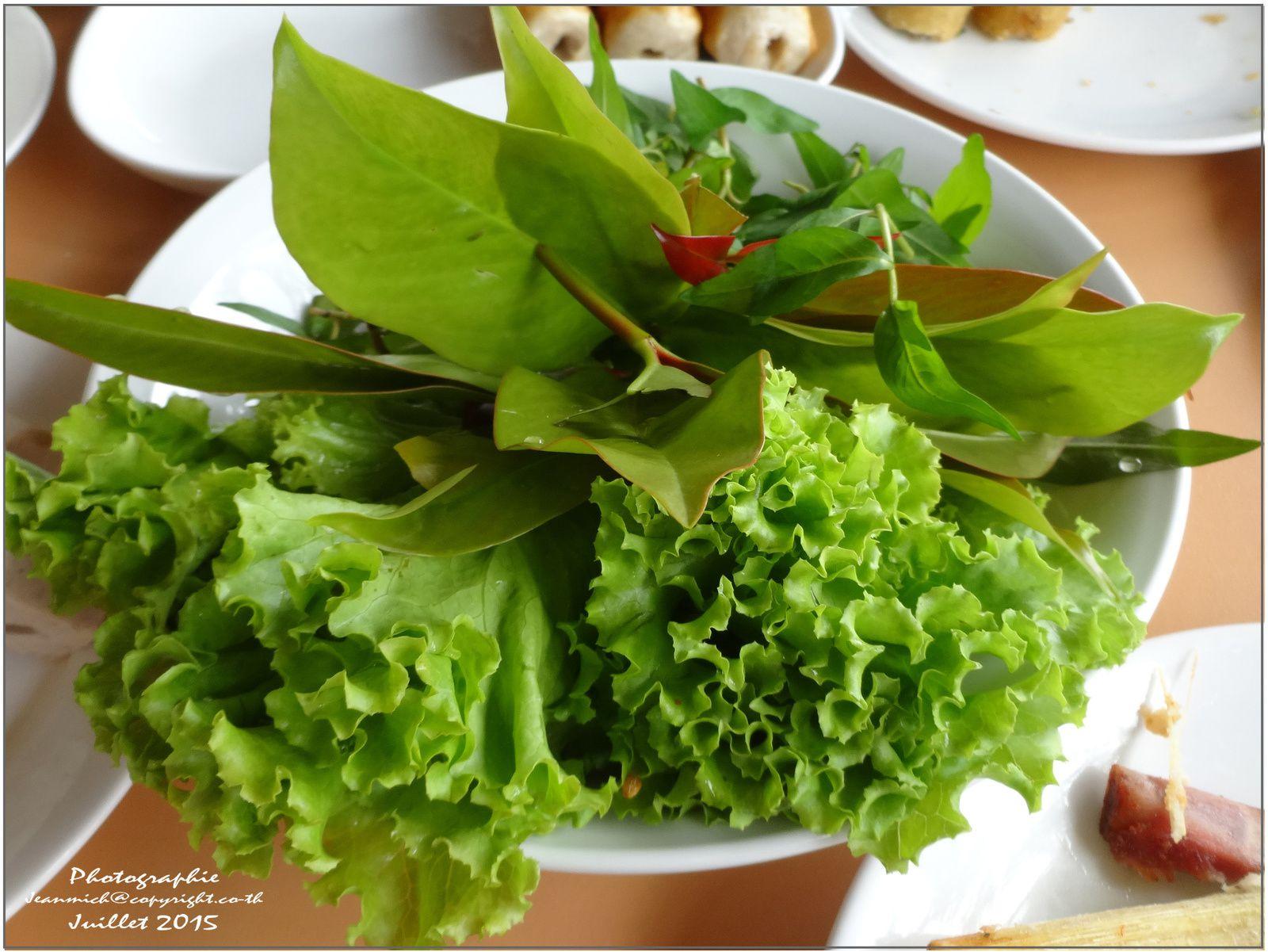 Tout simplement délicieux... un choix de légumes de première fraîcheur pour faire ses rouleaux de printemps...