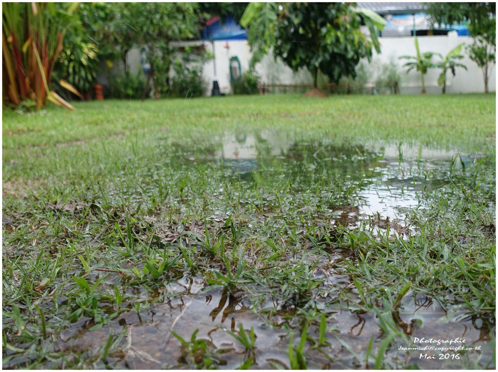 Un vrai temps de mousson (Thaïlande)