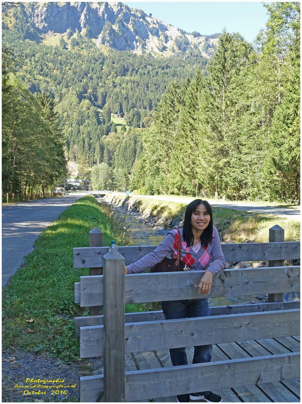 Le Grand-Paradis  Champéry, Valais, Suisse).