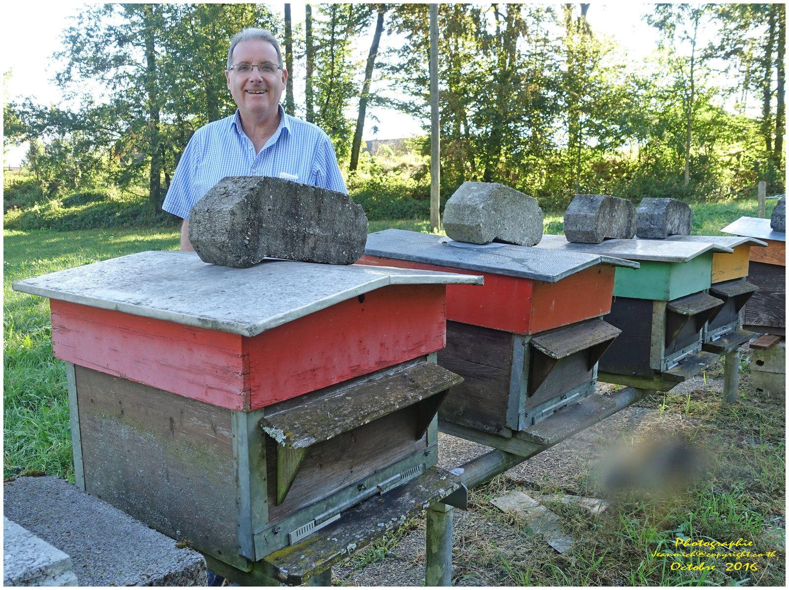 Les abeilles à Dédé.... (Suisse, Muraz Valais)