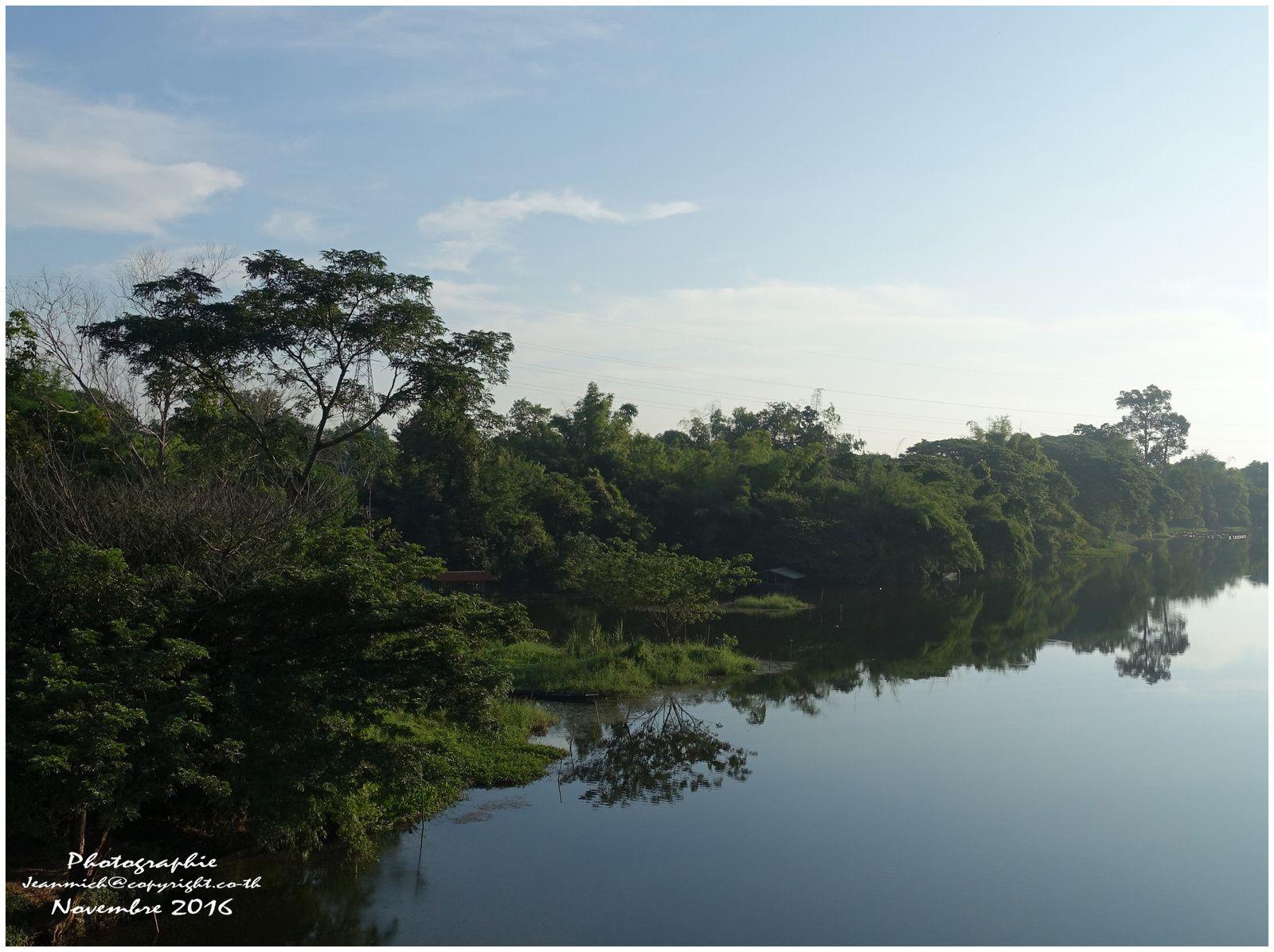 Lumières matinales dans les rizières de Thaïlande