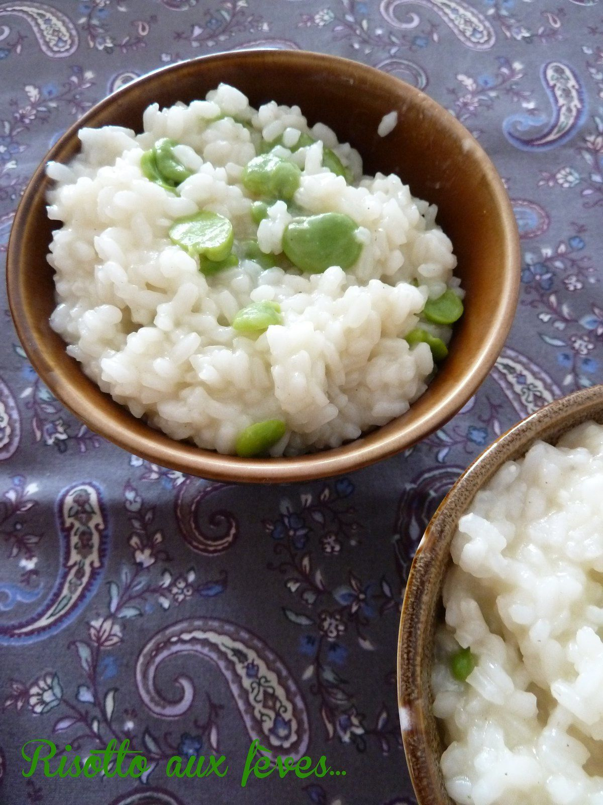 risotto aux fèves