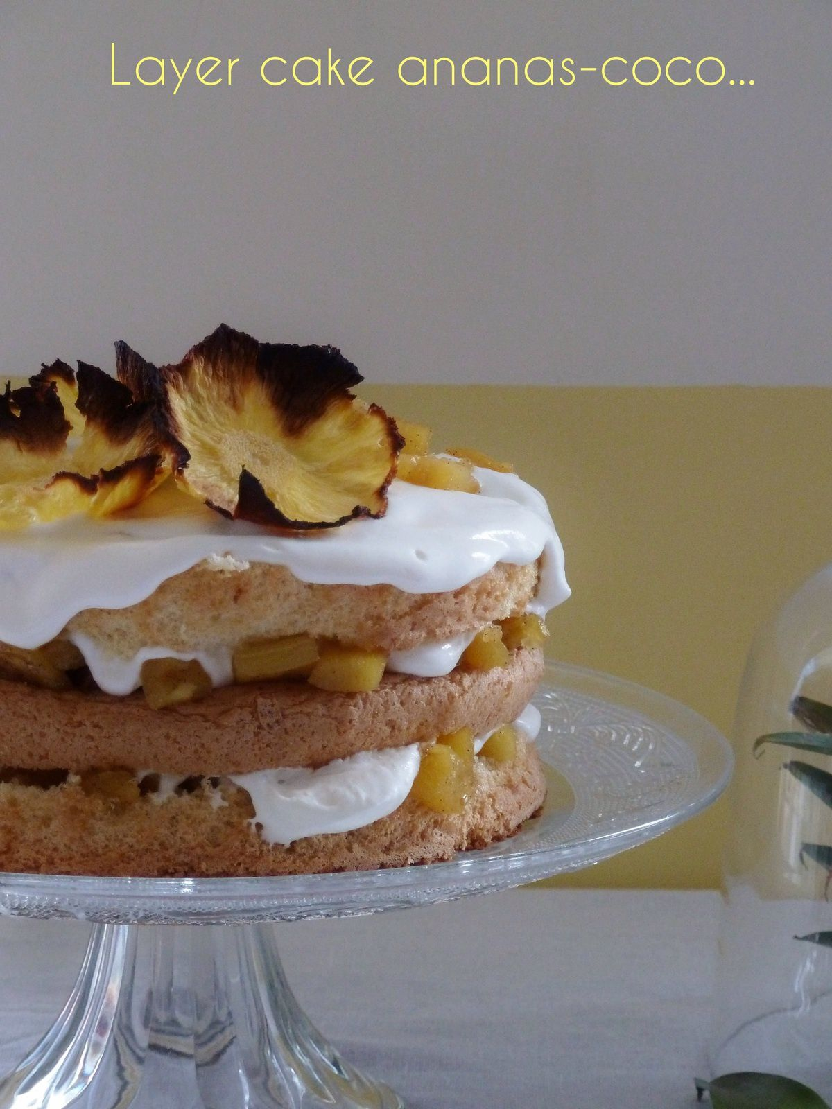 Layer cake ananas-coco
