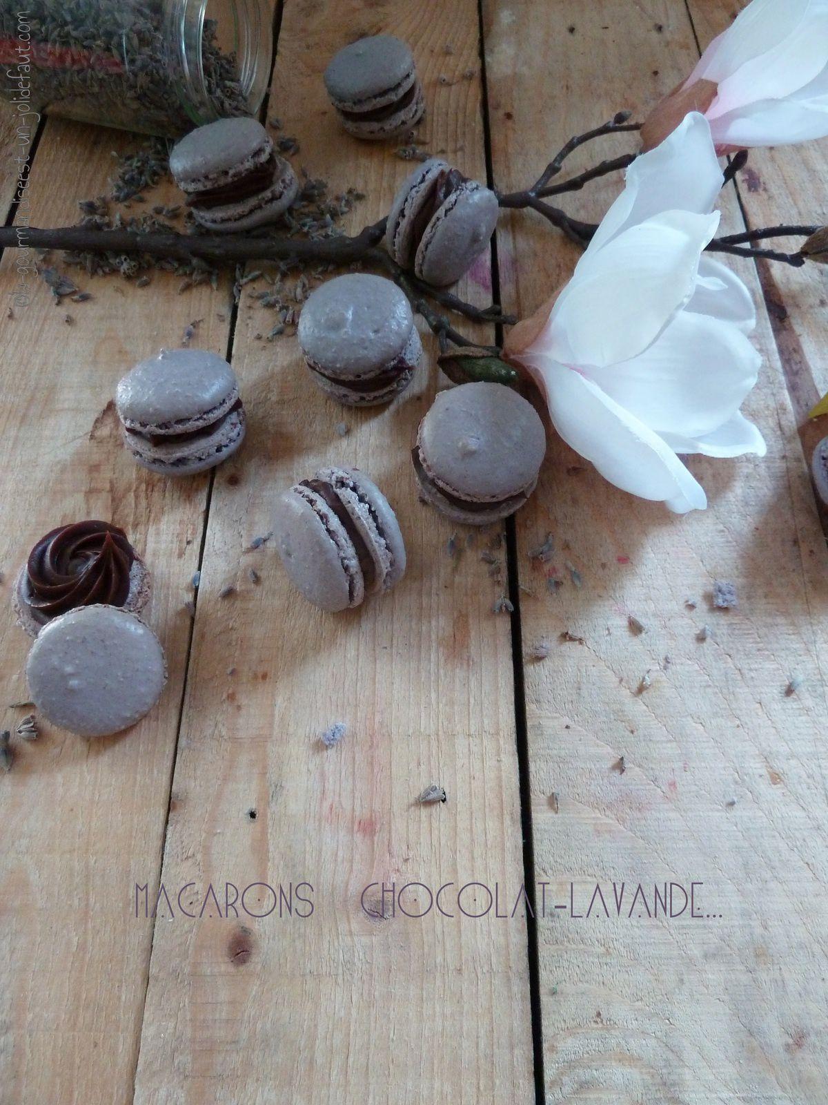 Macaron chocolat au lait et lavande