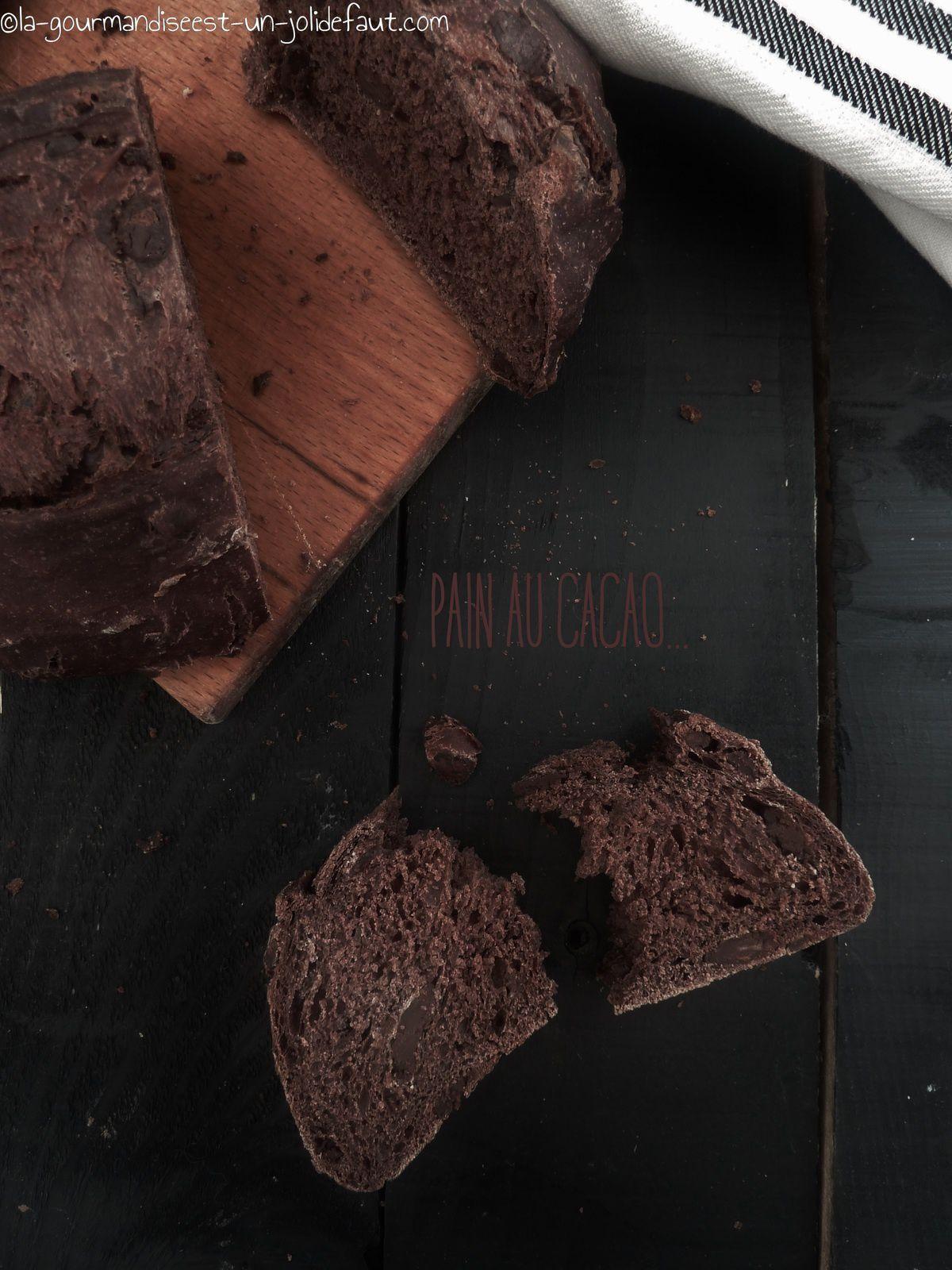 Pain au cacao et aux pépites de chocolat