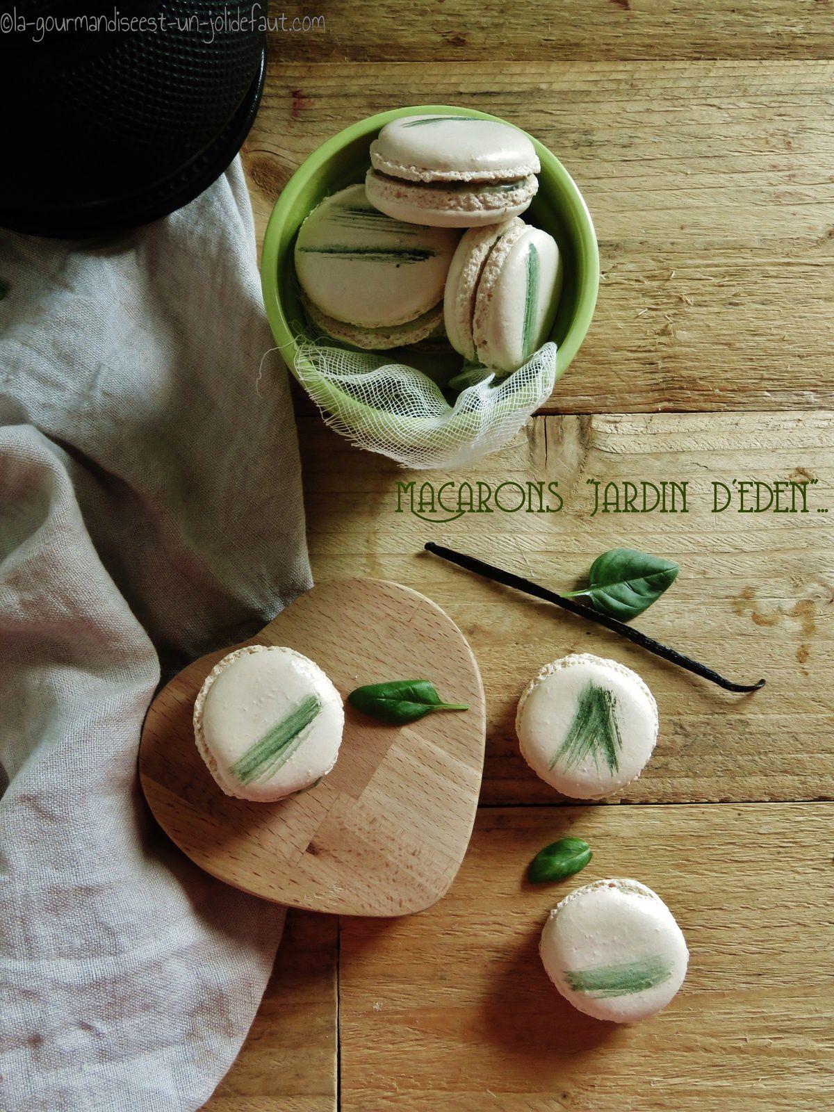 Macarons vanille-basilic (jardin d'éden de Pierre Hermé)