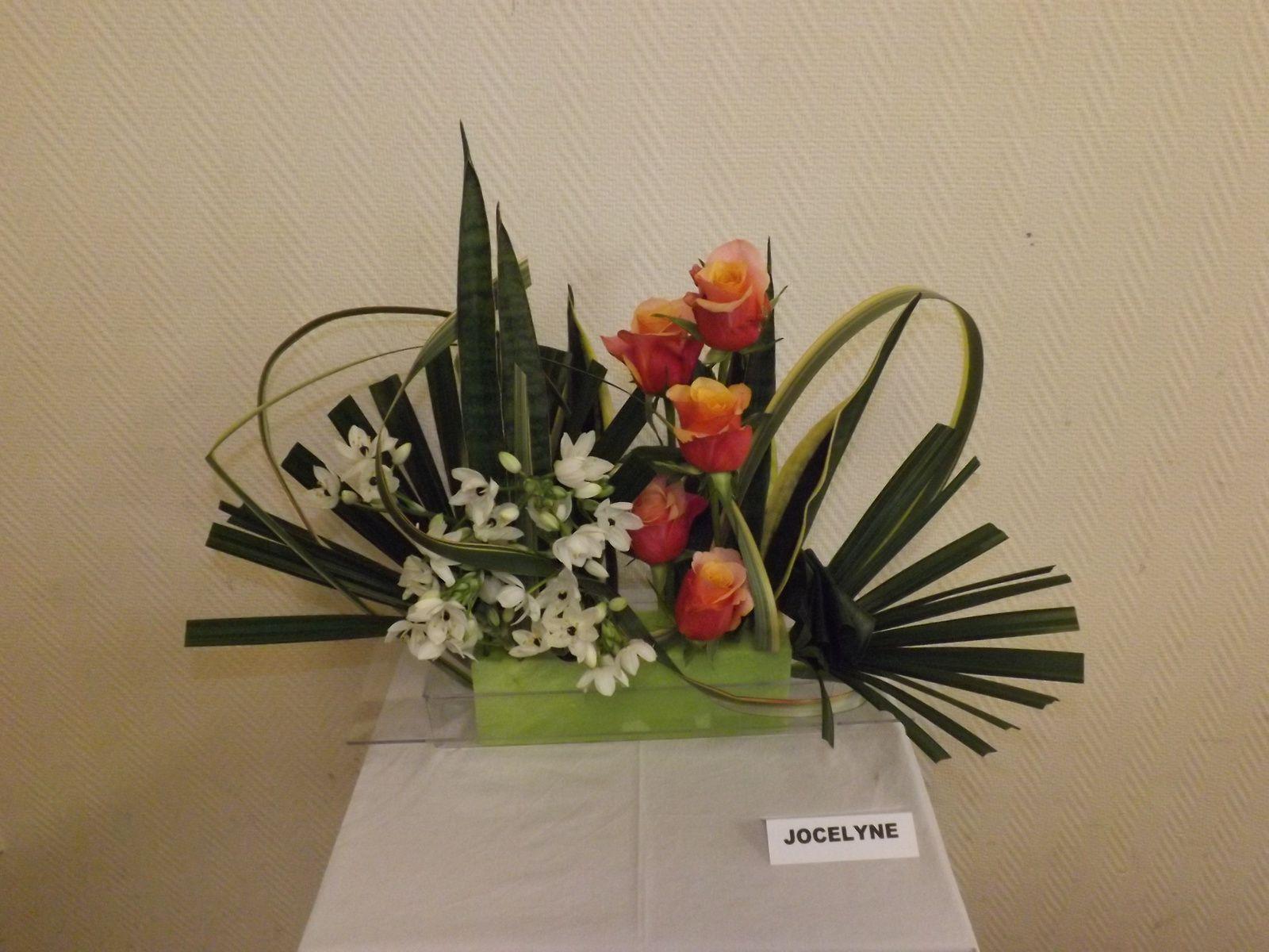 Chamerops hollande, phormium,sanseveria, roses, ornithogale, mousse de couleur