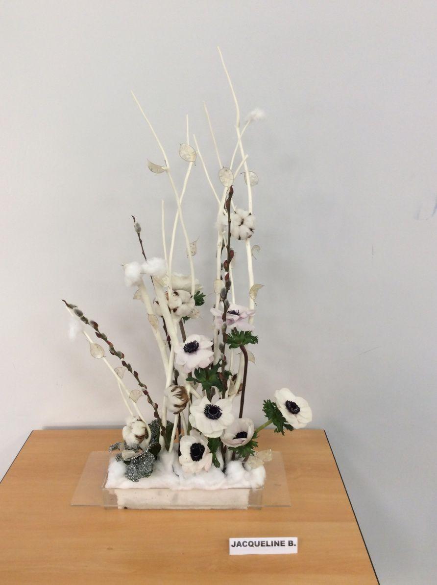 Mitsumata, chatons,fleurs de coton, galas, monnaie du pape, Anémones