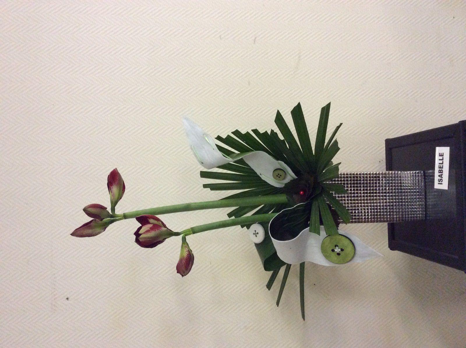 Amaryllis, Galax, Aspidistra, Livingstonia, feutrine adhesive,boutons en bois.