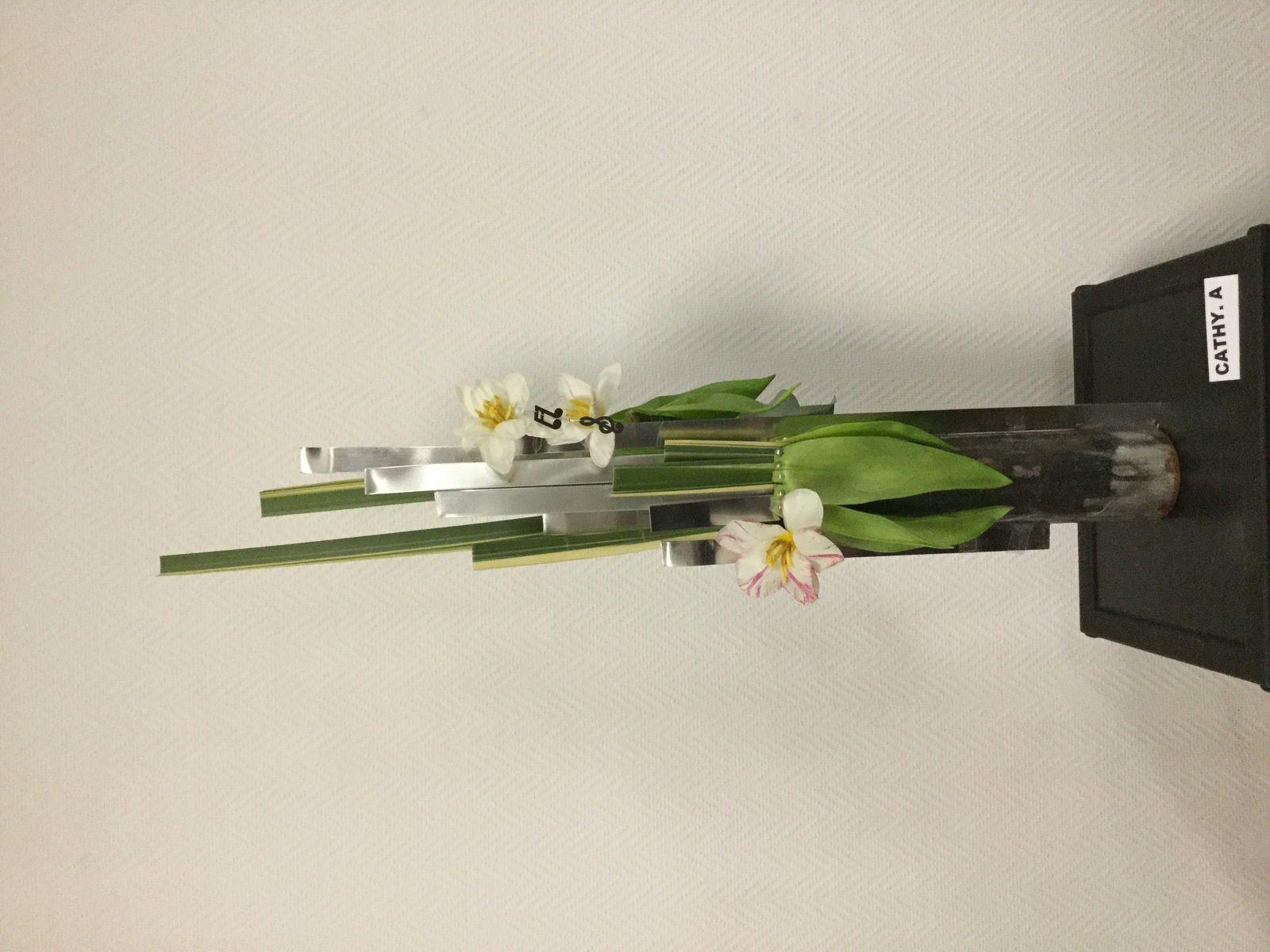 Tulipes, flex-grass,typha,xanadu,aspidistra,eucalyptus,bois,