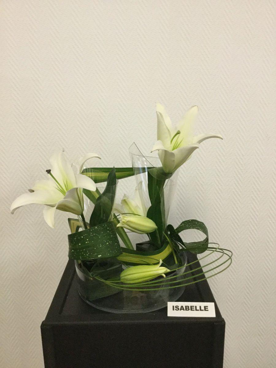 Lys oriental, pandanus, phormium, flexi-grass, aspidistra tacheté, feuille de plastique transparente