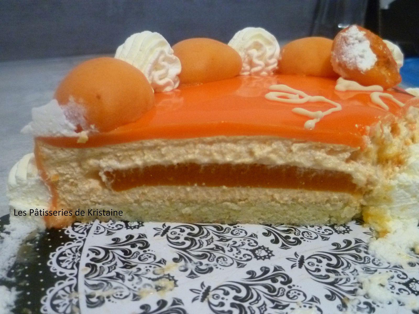 Gateau A La Confiture D Abricot Cake Avec Deux Oeufs