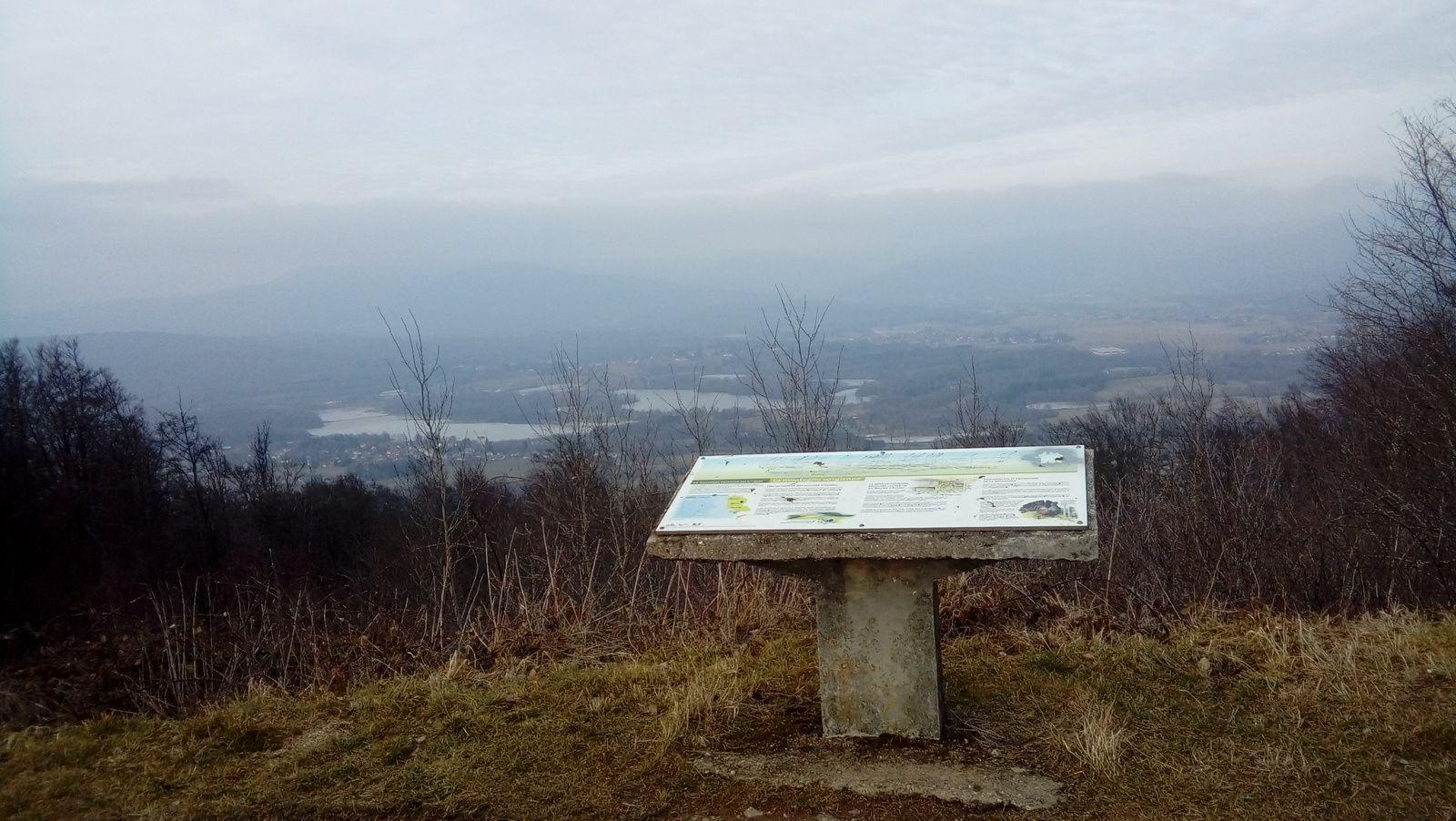 Belfort et sommet du Salbert