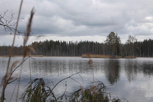 Voyage en Finlande et Russie - 12 au 20 avril 2014