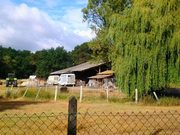 ferme de Tartifume proche golf, ferme équestre de Romain ville,  ferme du bleu, ferme de Courtillas, la dernière photo , le champ de salades à été prise à Blanquefort.