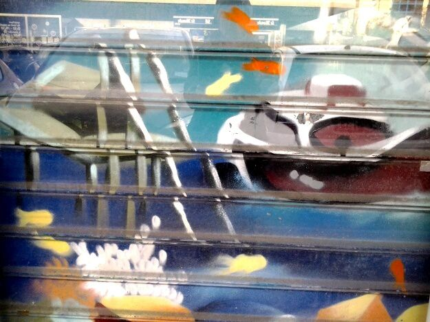Père Noël dans la vitrine de la nouvelle boulangerie, le rideau de la poissonnerie, plus deux photos prises à Bordeaux
