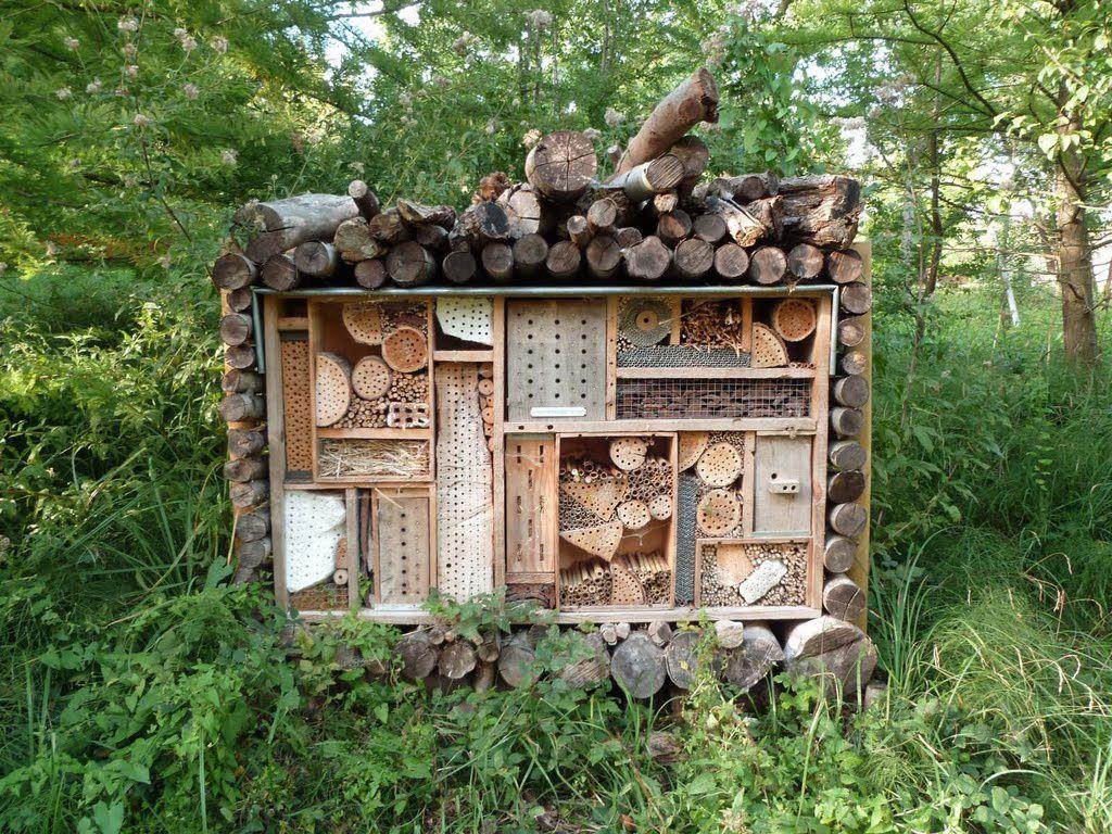 Une balade organisée par l ecosite sur le thème : encourageons la biodiversité. nous avons pu observer le Milan noir du haut du belvédère qui surplombe la lagune, nous avons vu les ruches et deguste du miel. decouverte de deux nouvelles sculptures le long de la grande promenade.