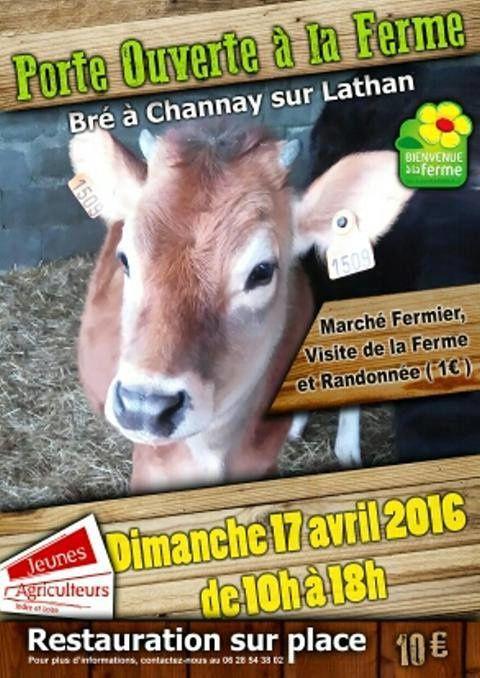 @Bienvenue à la Ferme à Channay sur Lathan