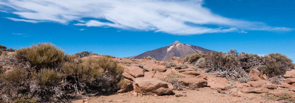 Tenerife : Ascension du Guajara