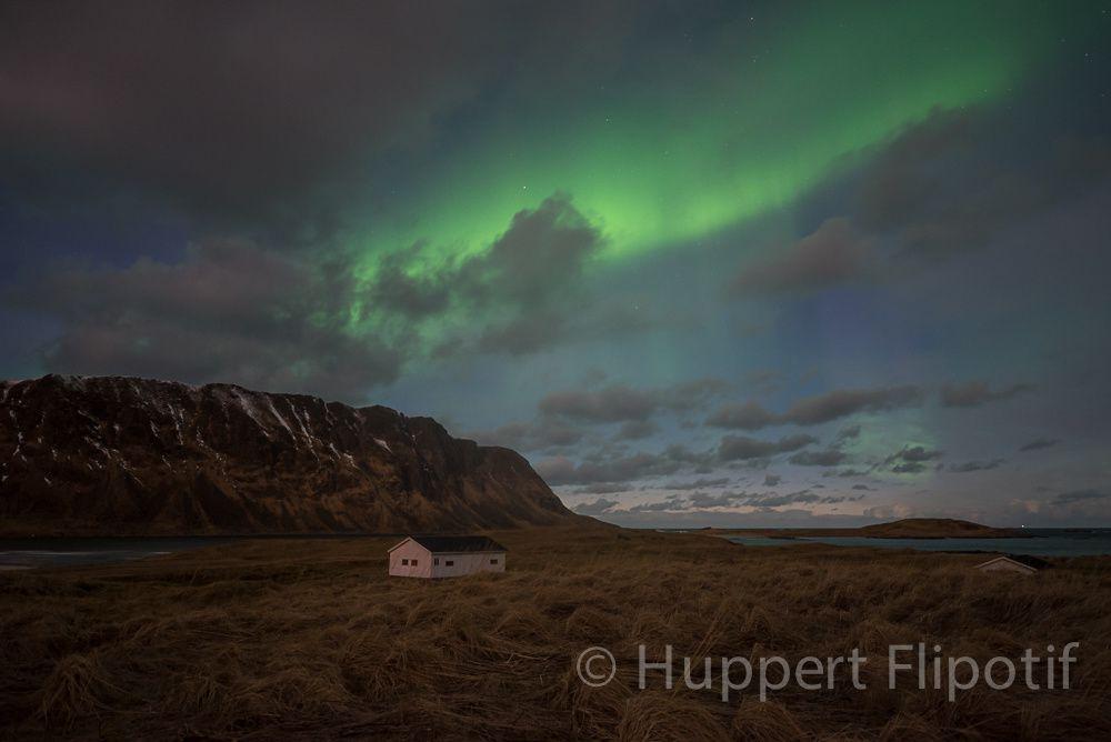 Norvège Lofoten - Northern Light