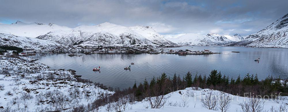 Norvège Lofoten - Panoramiques
