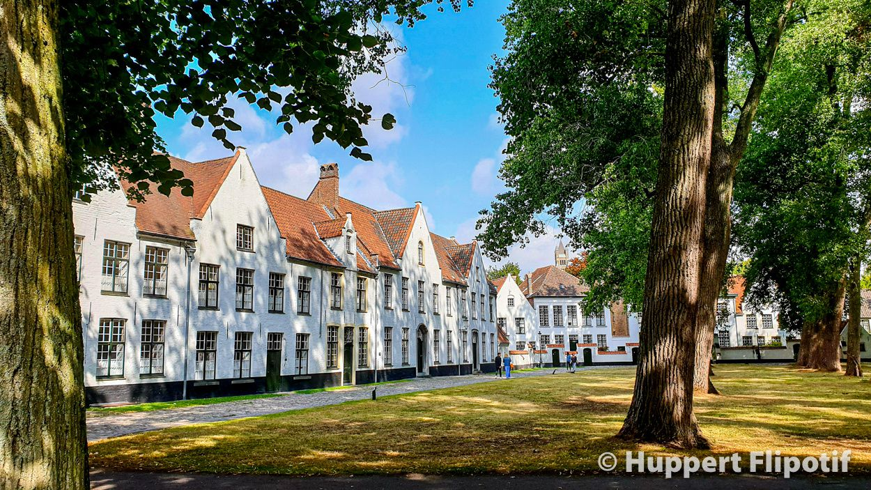 Bruges Le béguinage de la Vigne (Begijnhof)
