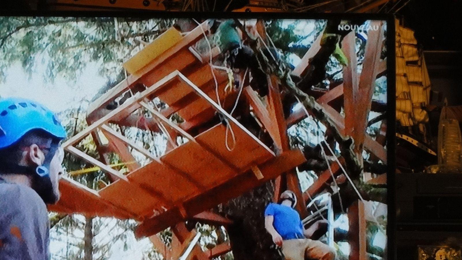 Les cabanes perchées. Constructeur: Pete NELSON U S A