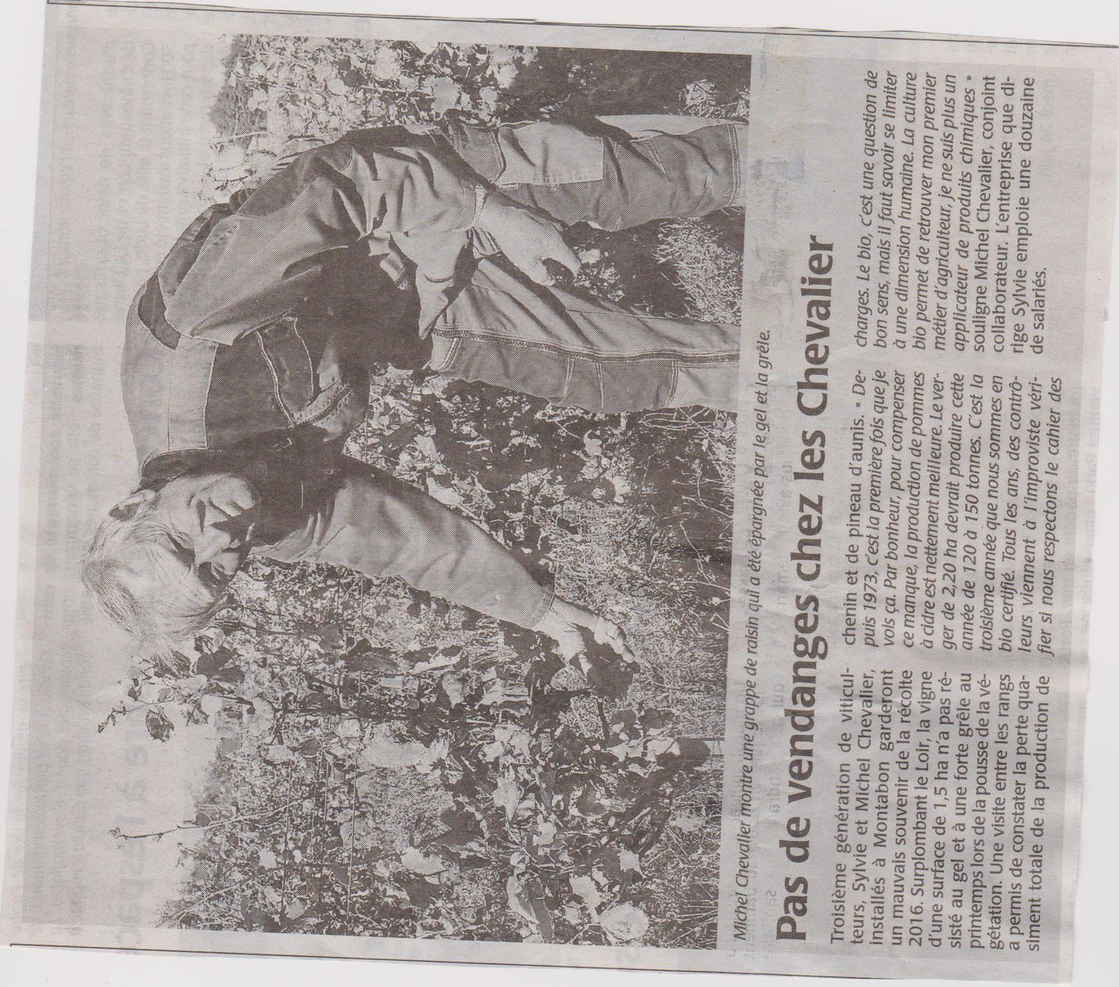 PAS DE VENDANGE CHEZ LES CHEVALIER 72500 MONTABON.