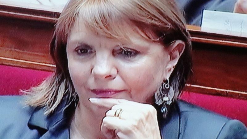 La Députée PS de la  Sarthe, Sylvie TOLMONT  a posé une question au gouverement.