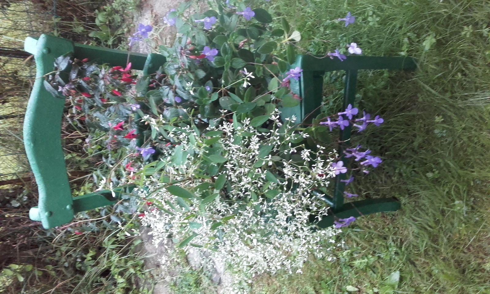 Une chaise abîmée accueille une potée de fleurs