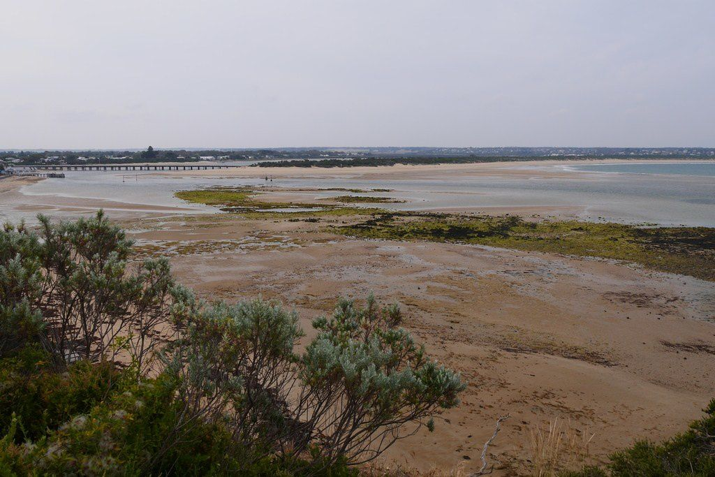 20163011 Geelong