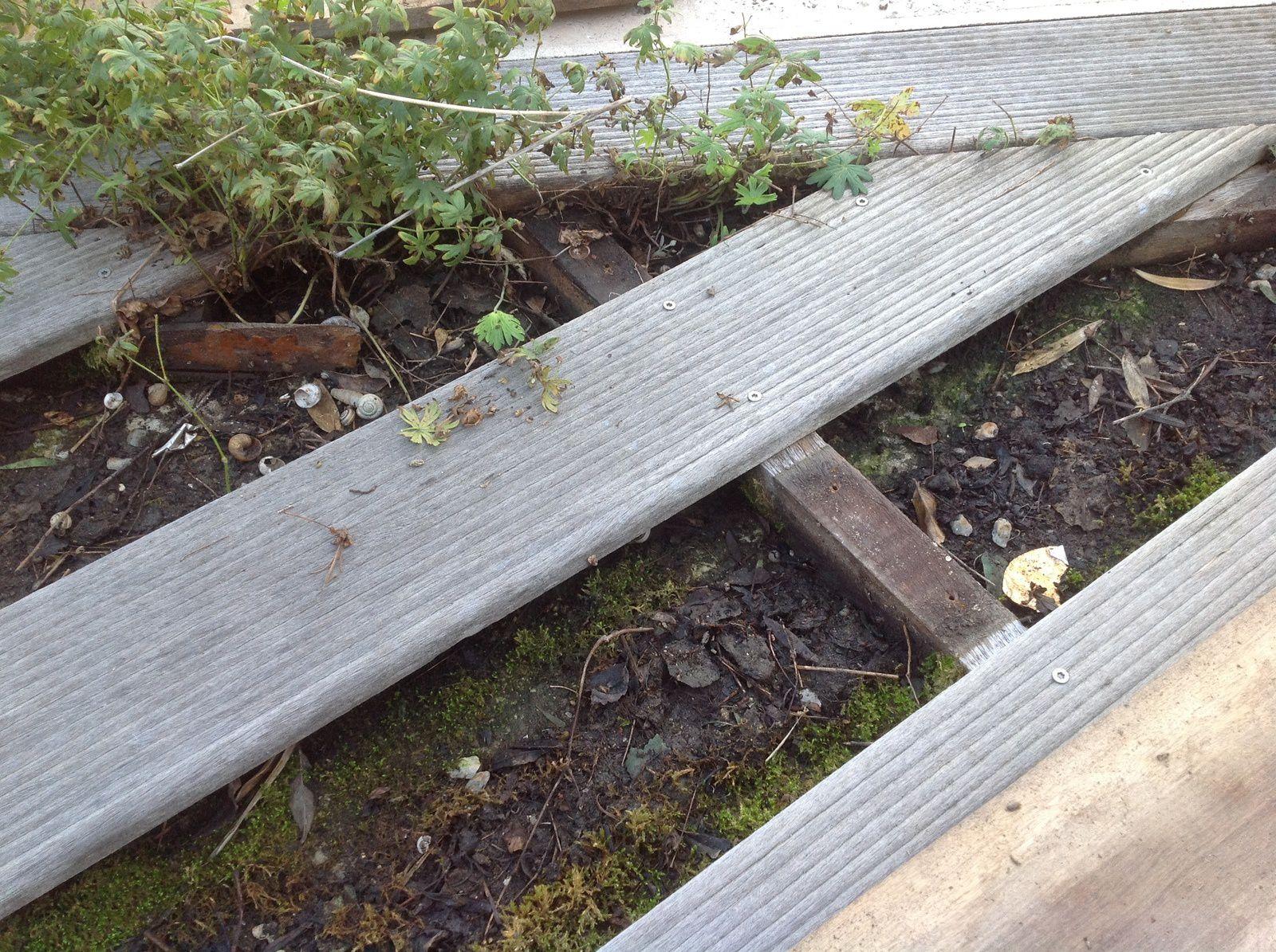 Terrasse bois le blog de for Cout terrasse en bois