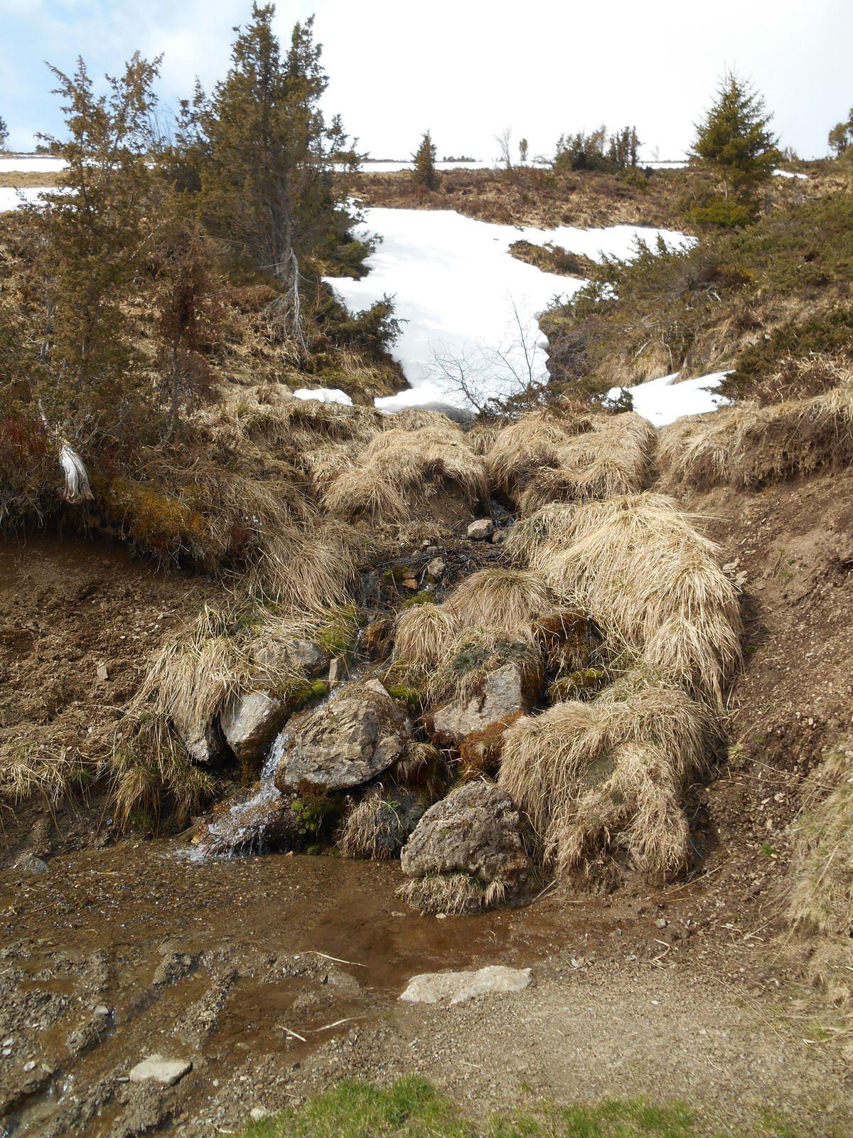 La neige commence à être présente vers 1600 m, mais tout de même en infime quantité.